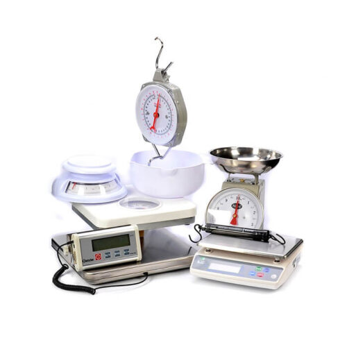 Electronic Weight Scale